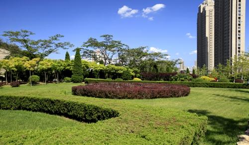 大连-东特新居(大连园林绿化项目)