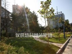 长春市-将军楼(大连园林绿化项目)