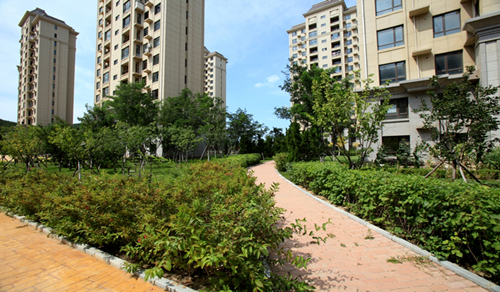 旅顺-医科大学-三标段-居住区(园林绿化工程项目)