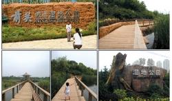 大连园林绿化   前关中央湿地公园(景观设计)