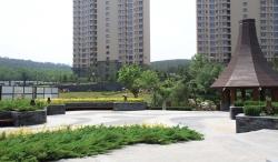 旅顺-华发新城-二期工程(地产工程绿化项目)