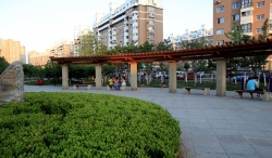 大连园林绿化工程-风华路-景观带(绿化项目)