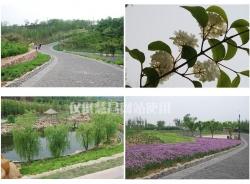 大连-开发区-植物园(绿化项目)
